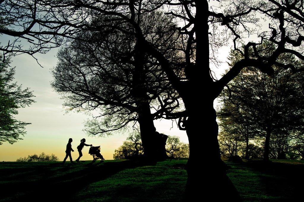 Parks in London - Richmond