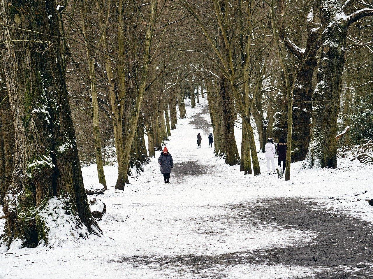 Selsdon park